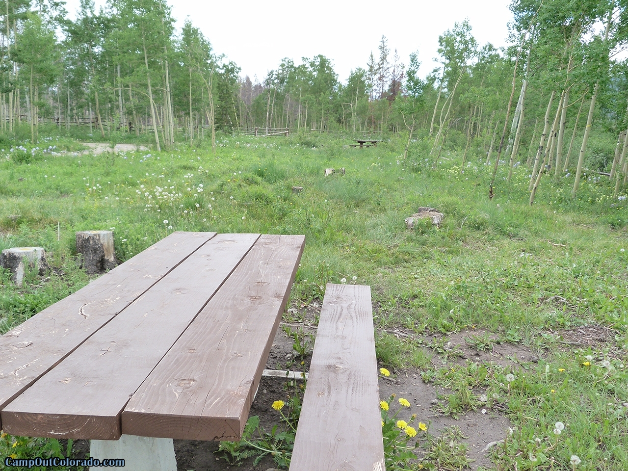 camp-out-colorado-aspen-campground-table