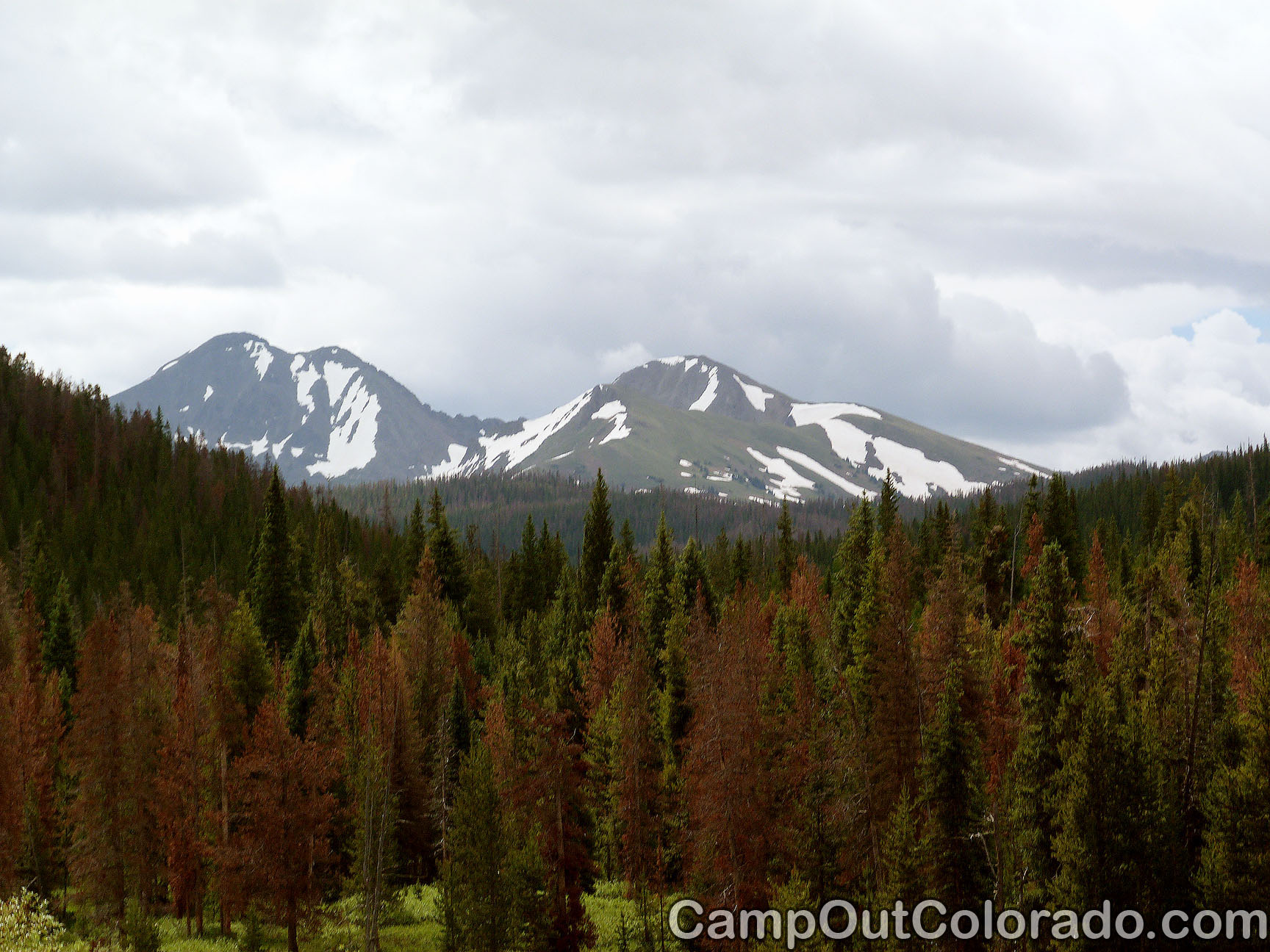 Camp-out-colorado-bockman-campground-beetle-kill-peaks
