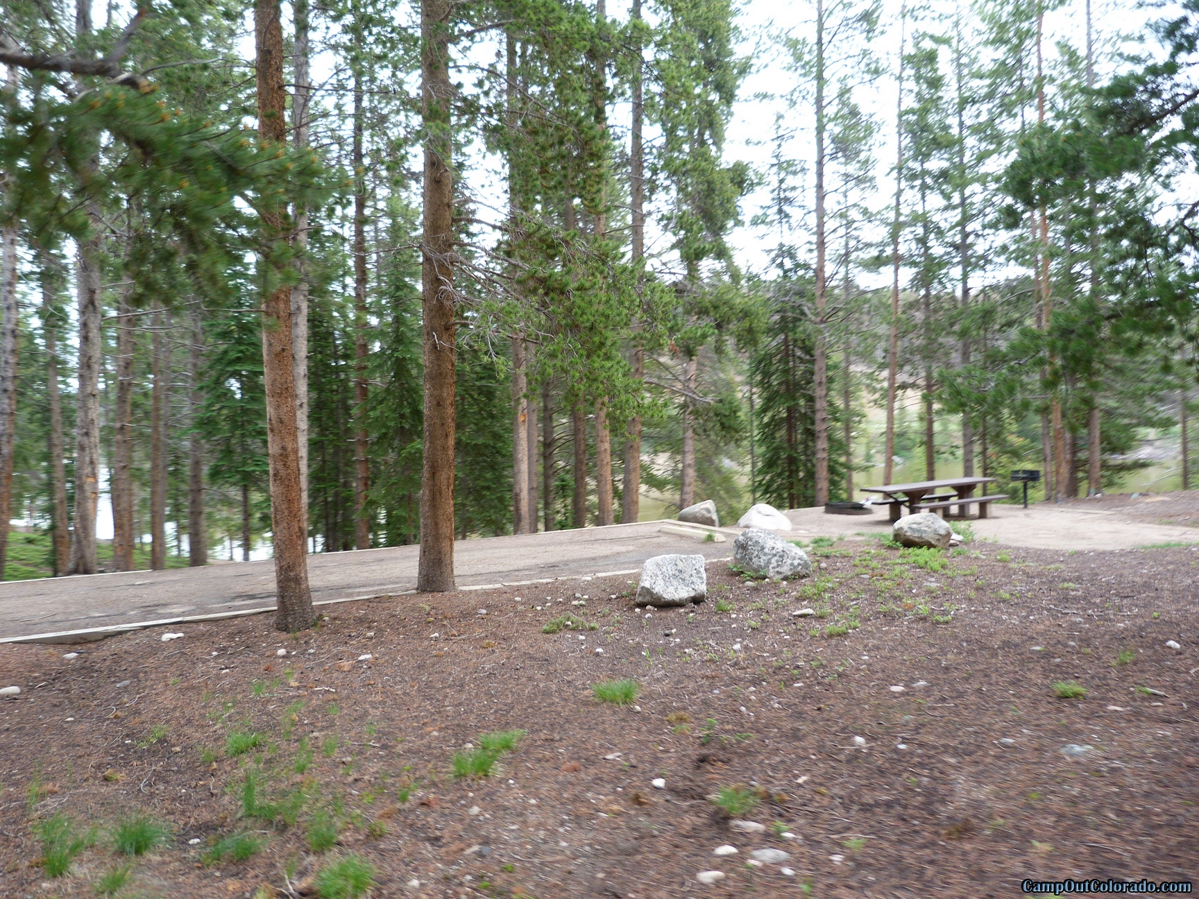 camp-out-colorado-chambers-lake-campground-flat-campsite