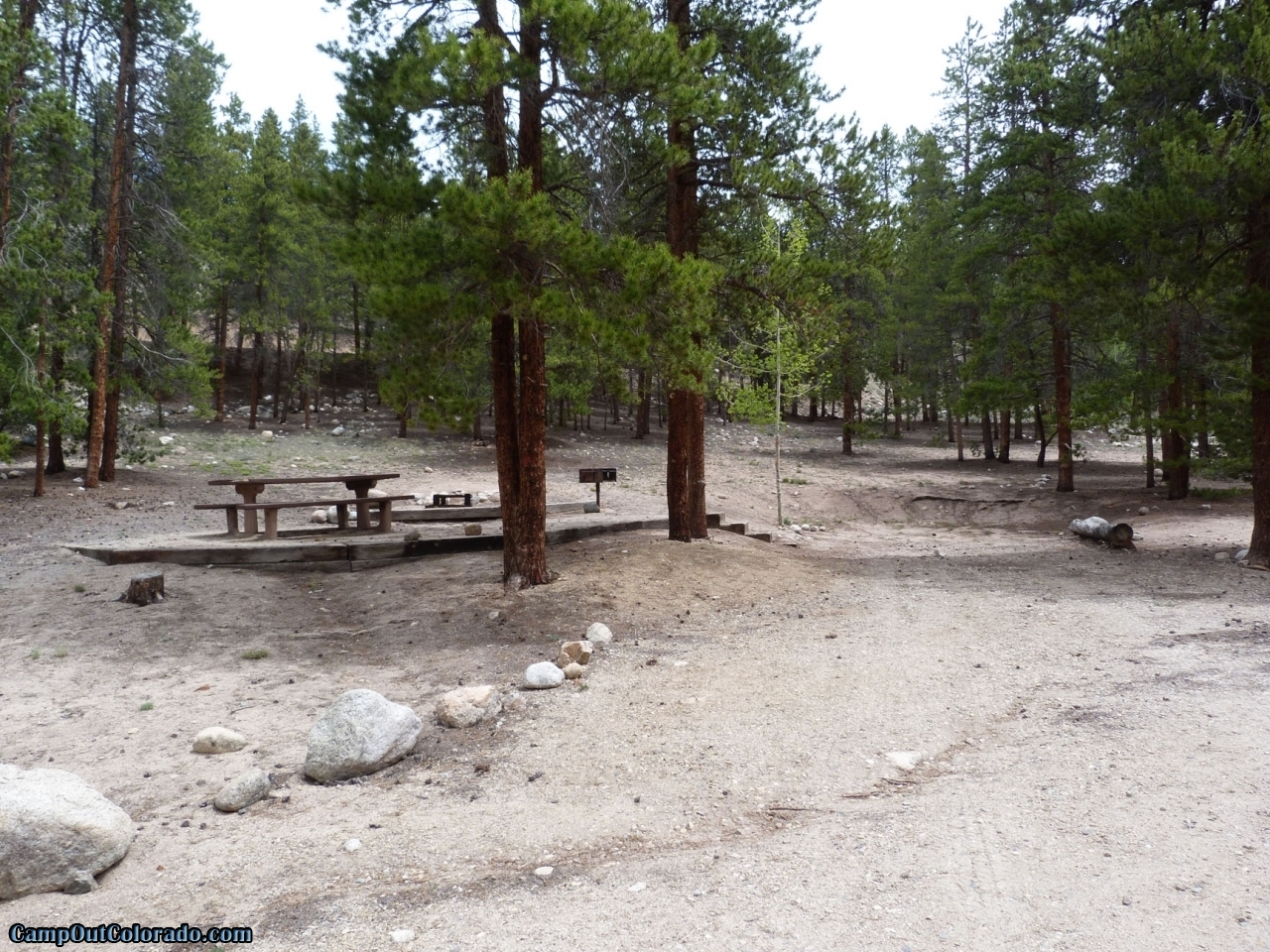 camp-out-colorado-lakeview-campground-forest-camping