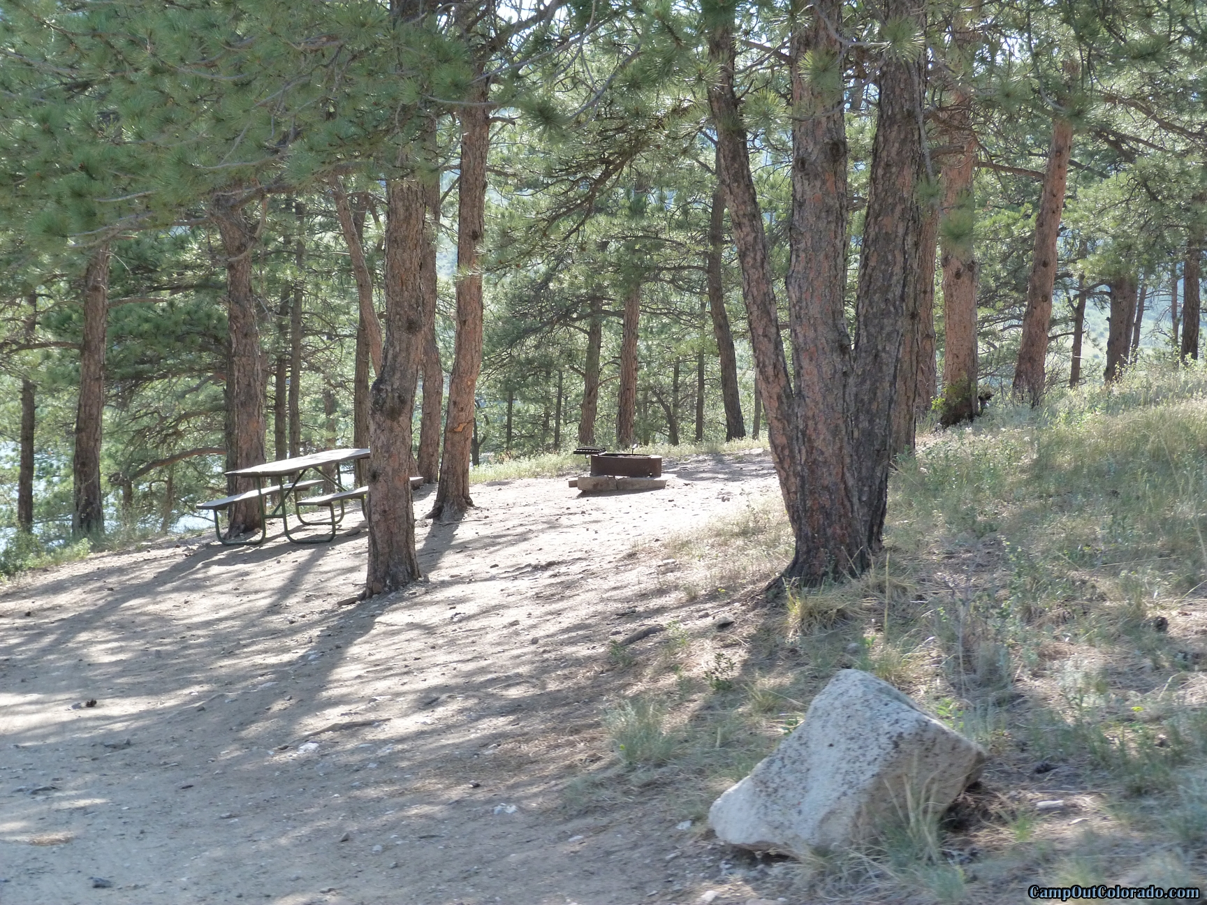 camp-out-colorado-pinewood-campsite-on-hill