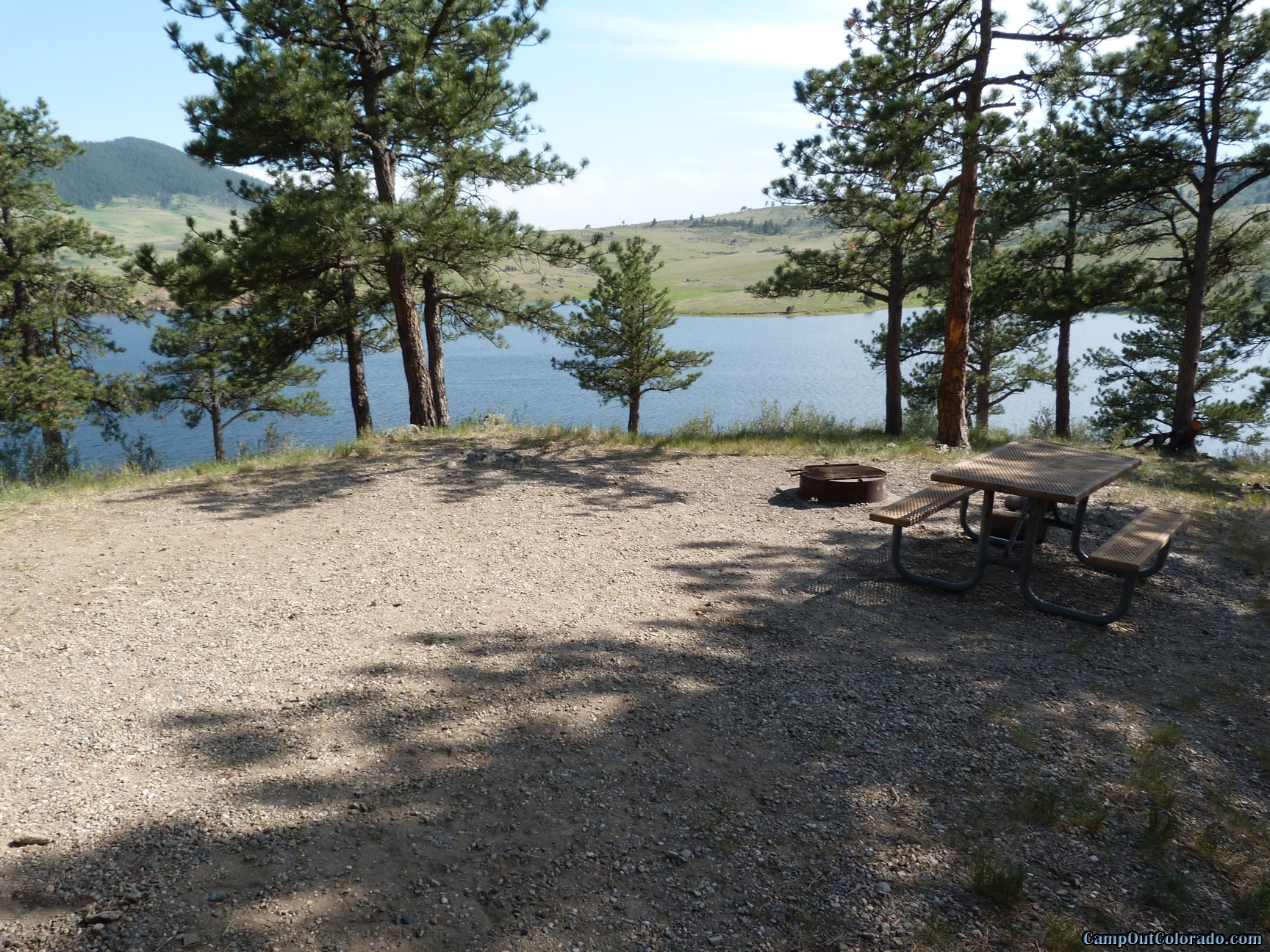 camp-out-colorado-pinewood-campsite