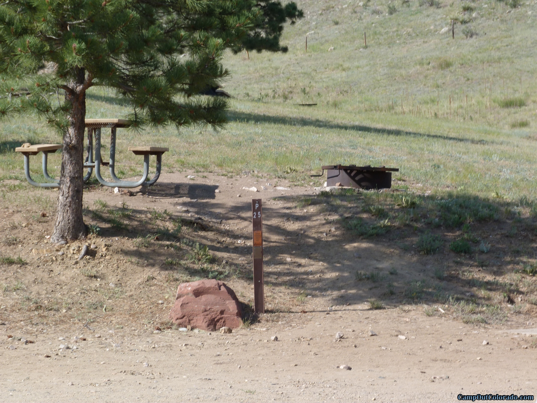 camp-out-colorado-pinewood-knoll-camping