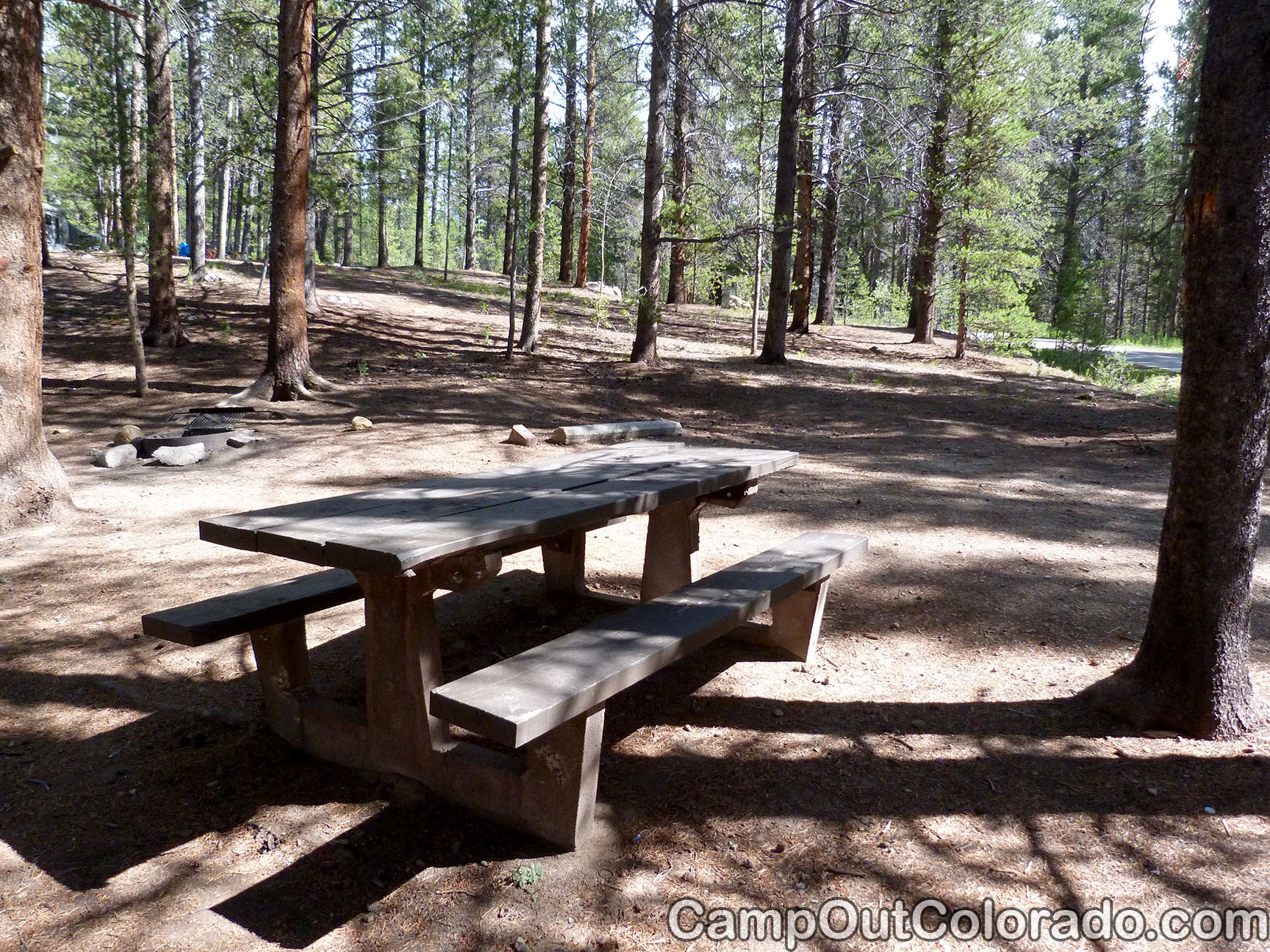 Camp-out-colorado-silver-dollar-turquoise-table