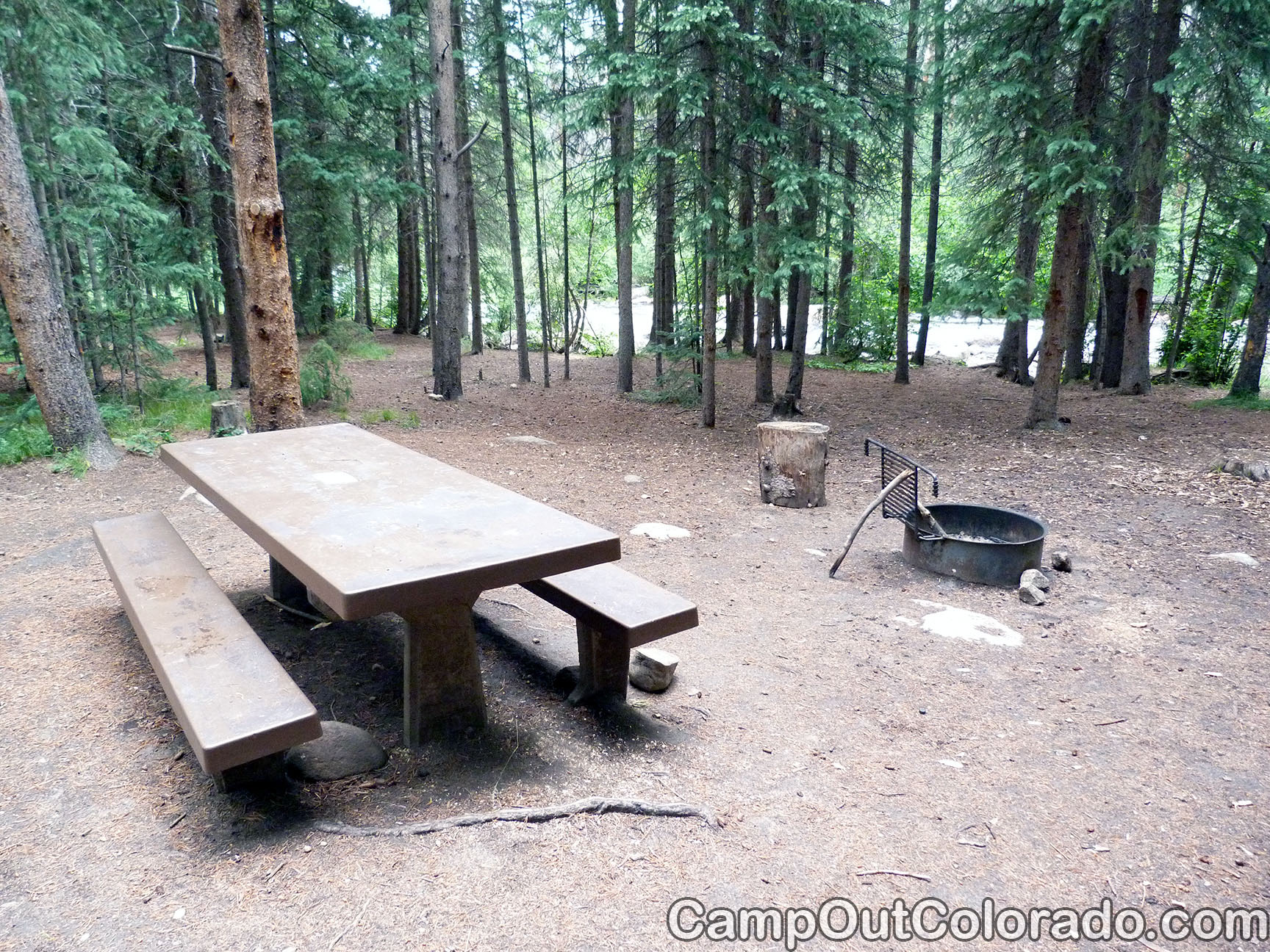 Campground-thick-woods-campsite 1