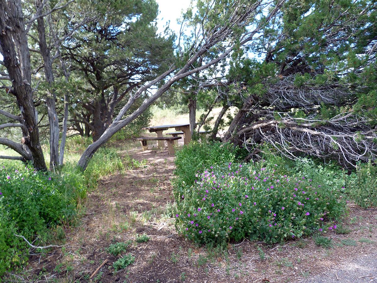 Campoutcolorado-lathrop-state-park-campground-campsite-cover