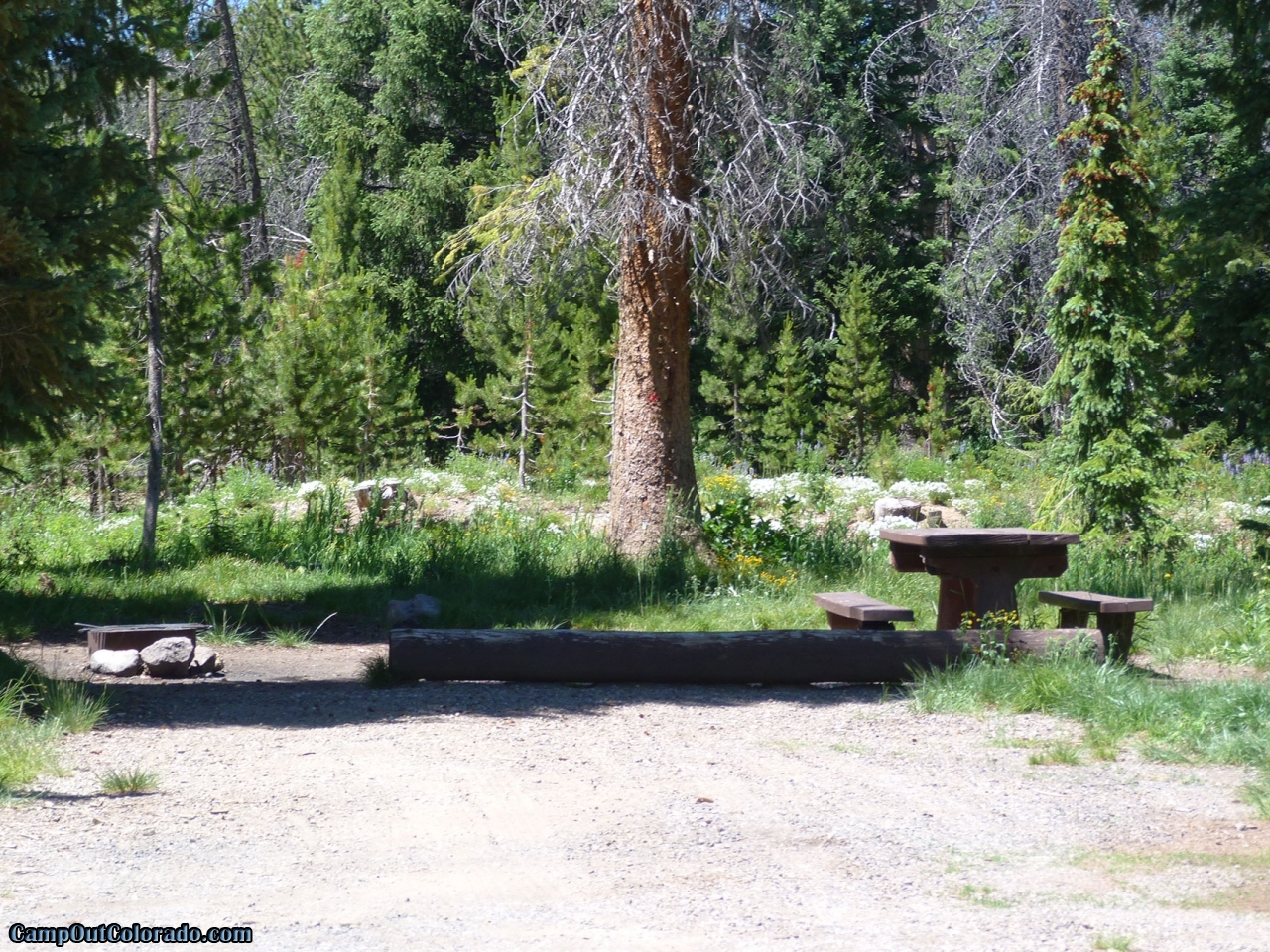 campoutcolorado-meadows-campground-rabbit-ears-flat-camping