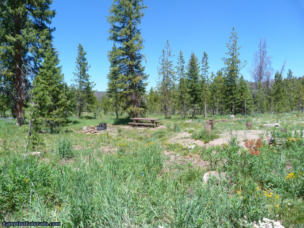 campoutcolorado-meadows-campground-rabbit-ears-good-spacing