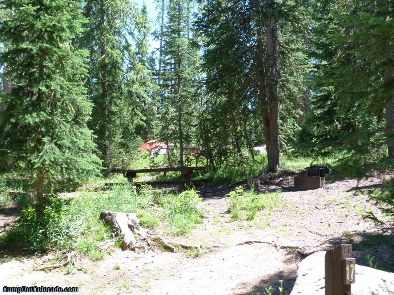 campoutcolorado-meadows-campground-rabbit-ears-thick-trees