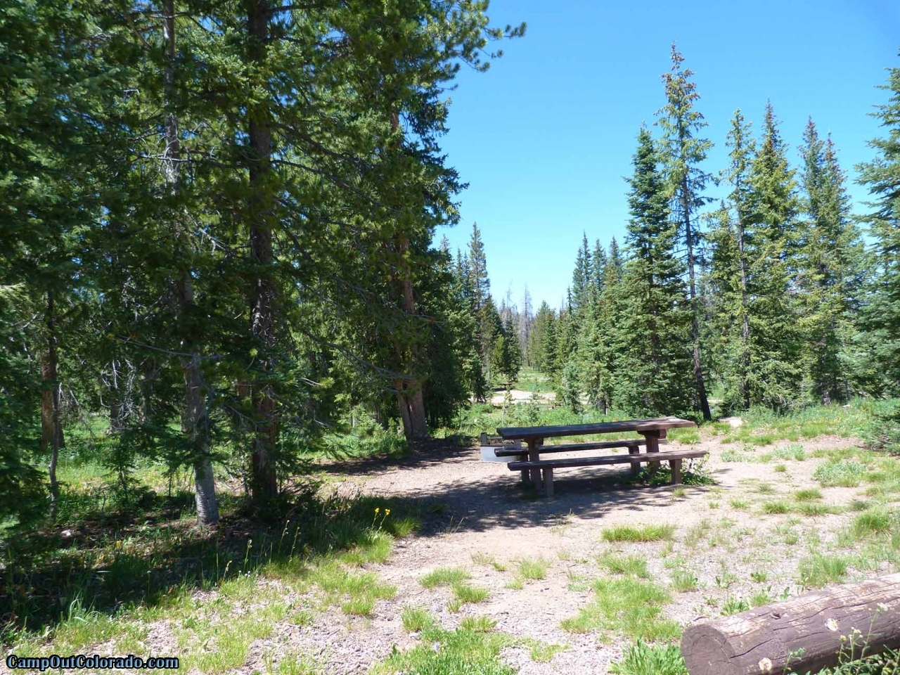 campoutcolorado-meadows-campground-rabbit-ears-trees
