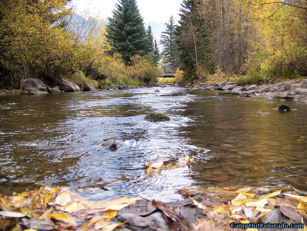 Order fishing and hunting licenses online for Colorado fishing license cost