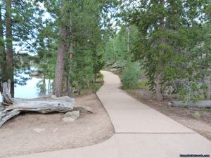 camp-out-colorado-bellaire-lake-nice-forest-path