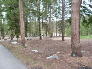 camp-out-colorado-chambers-lake-campground-well-spaced