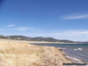 camp-out-colorado-eleven-mile-state-park-windblown-shore