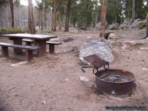 camp-out-colorado-kenosha-pass-campground-fire-ring