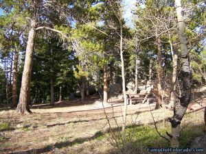 camp-out-colorado-kenosha-pass-campground-thick-trees