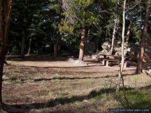 camp-out-colorado-kenosha-pass-campground-wooded-campsite