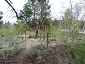 camp-out-colorado-lakeview-campground-campsite-in-aspen