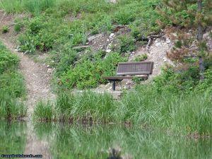 camp-out-colorado-ranger-lakes-campground-lake-bench.jpg