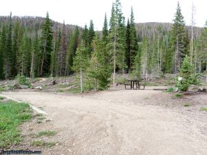 camp-out-colorado-ranger-lakes-campground-some-trees.jpg