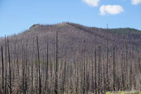 Campoutcolorado-burned-mountain