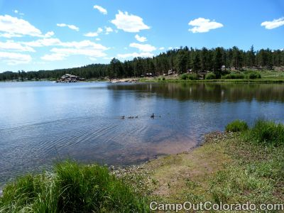 Campoutcolorado-dowdy-lake-campground-ducks-swim