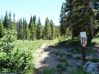 campoutcolorado-meadows-campground-rabbit-ears-hiking
