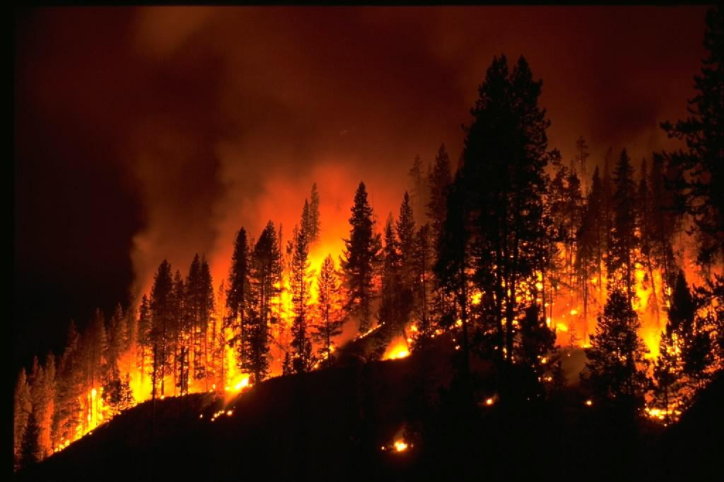 Fire Restrictions and Fire Bans - Camp Out Colorado