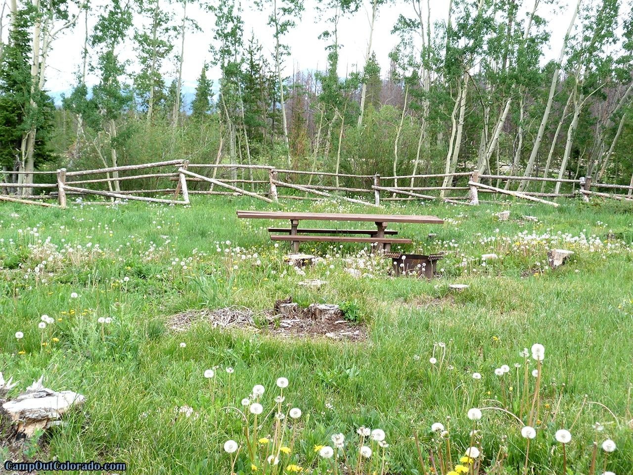camp-out-colorado-aspen-campground-unused-campsite