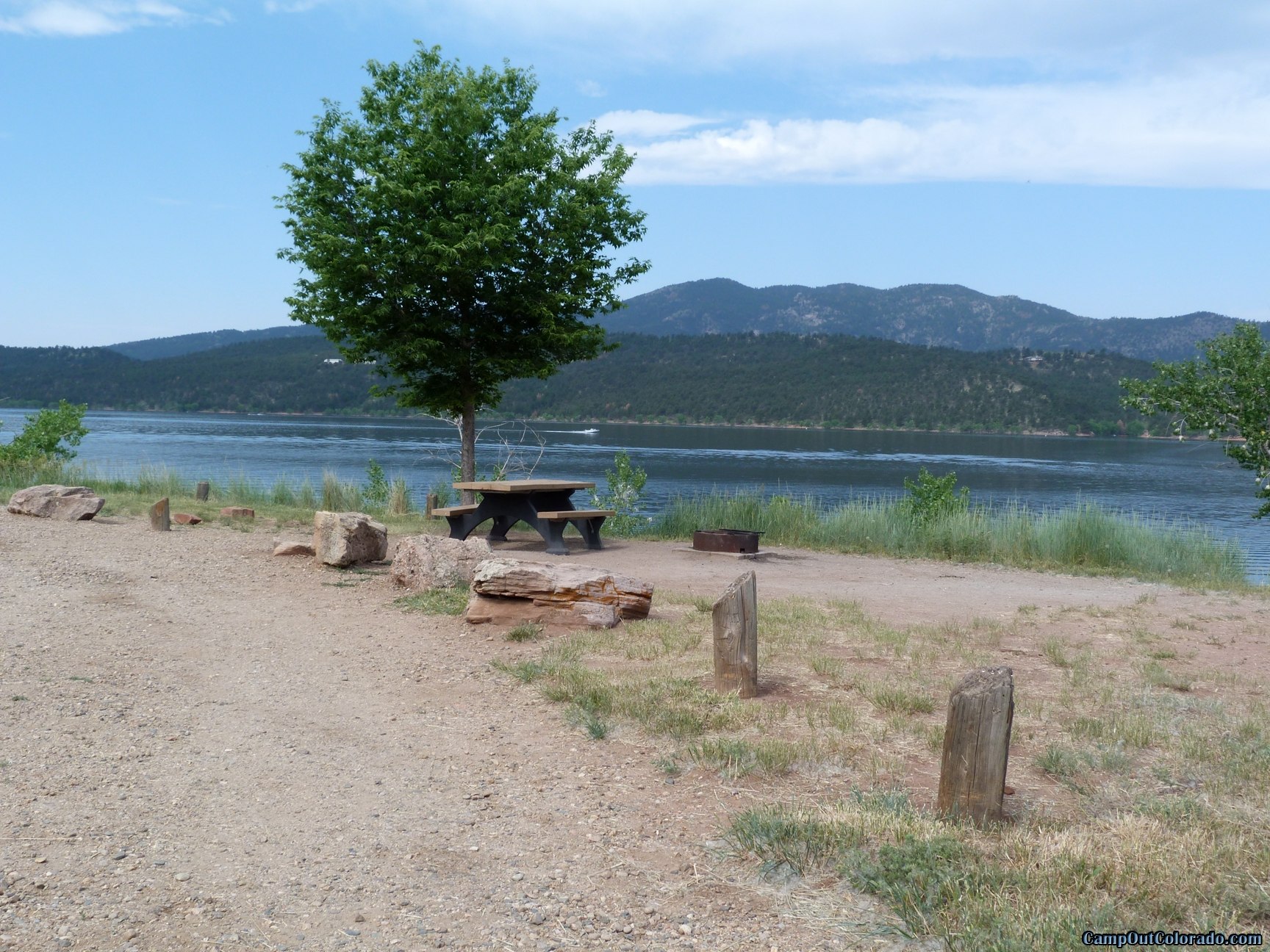 camp-out-colorado-carter-lake-one-tree