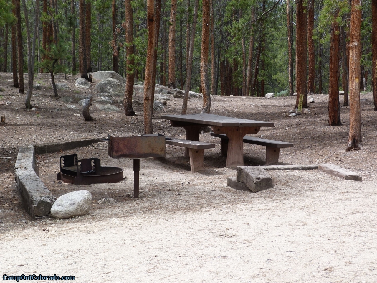 camp-out-colorado-lakeview-campground-thick-pines
