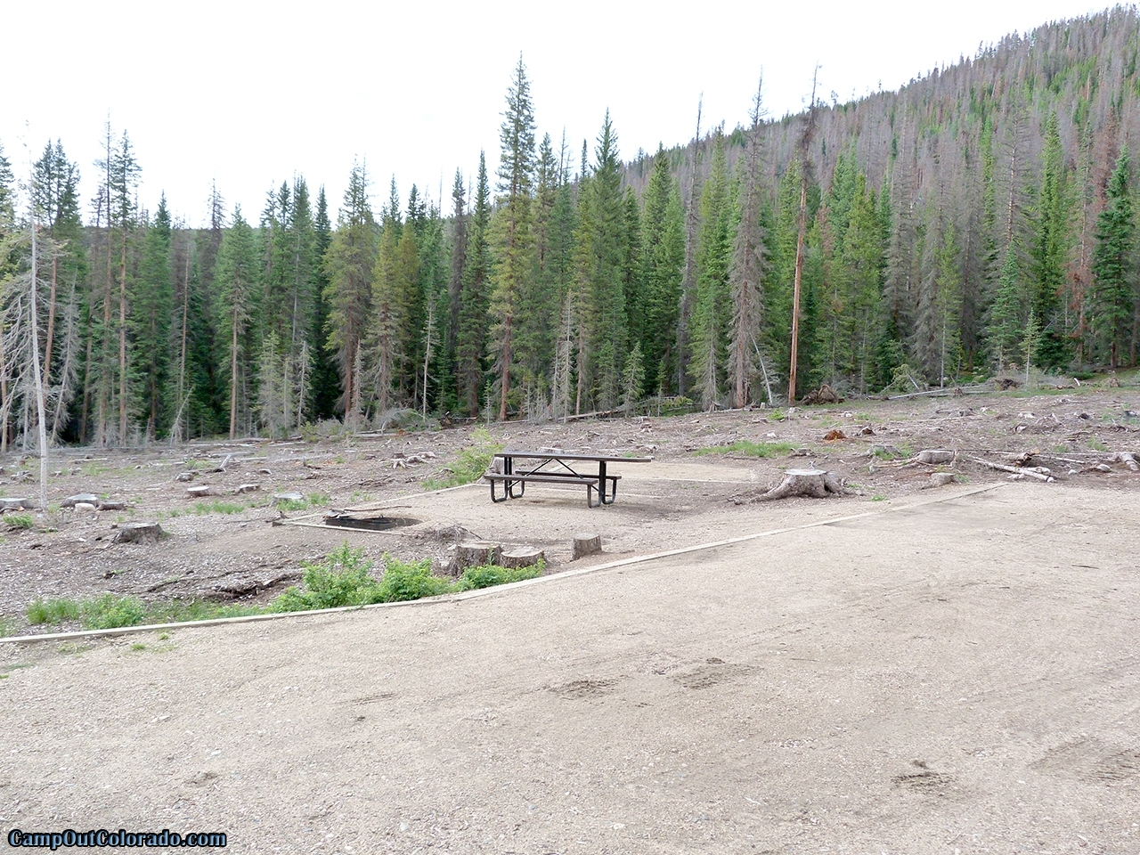 camp-out-colorado-ranger-lakes-campground-beetle-kill.jpg