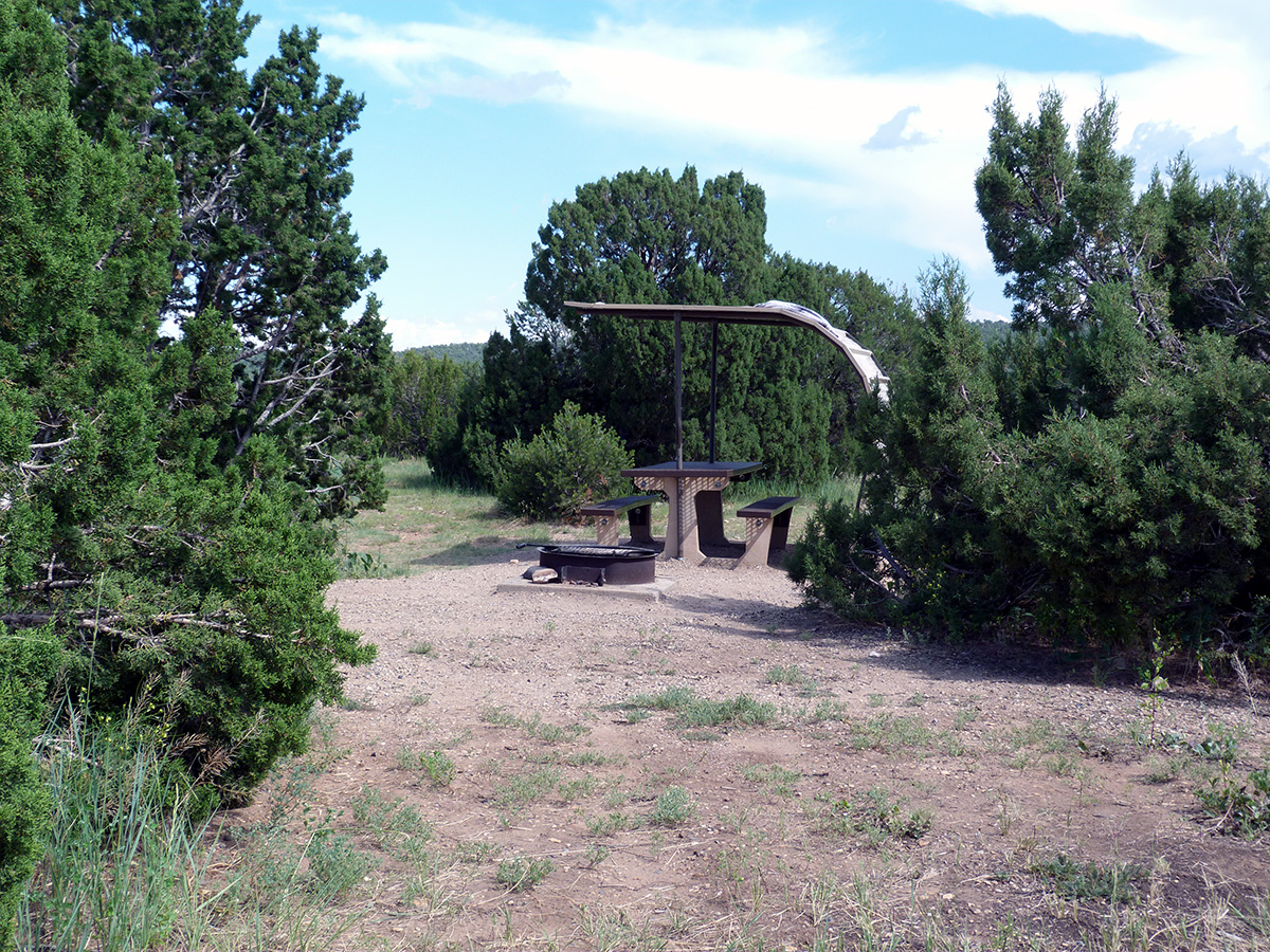 Campoutcolorado-lathrop-state-park-campground-campsite-trees