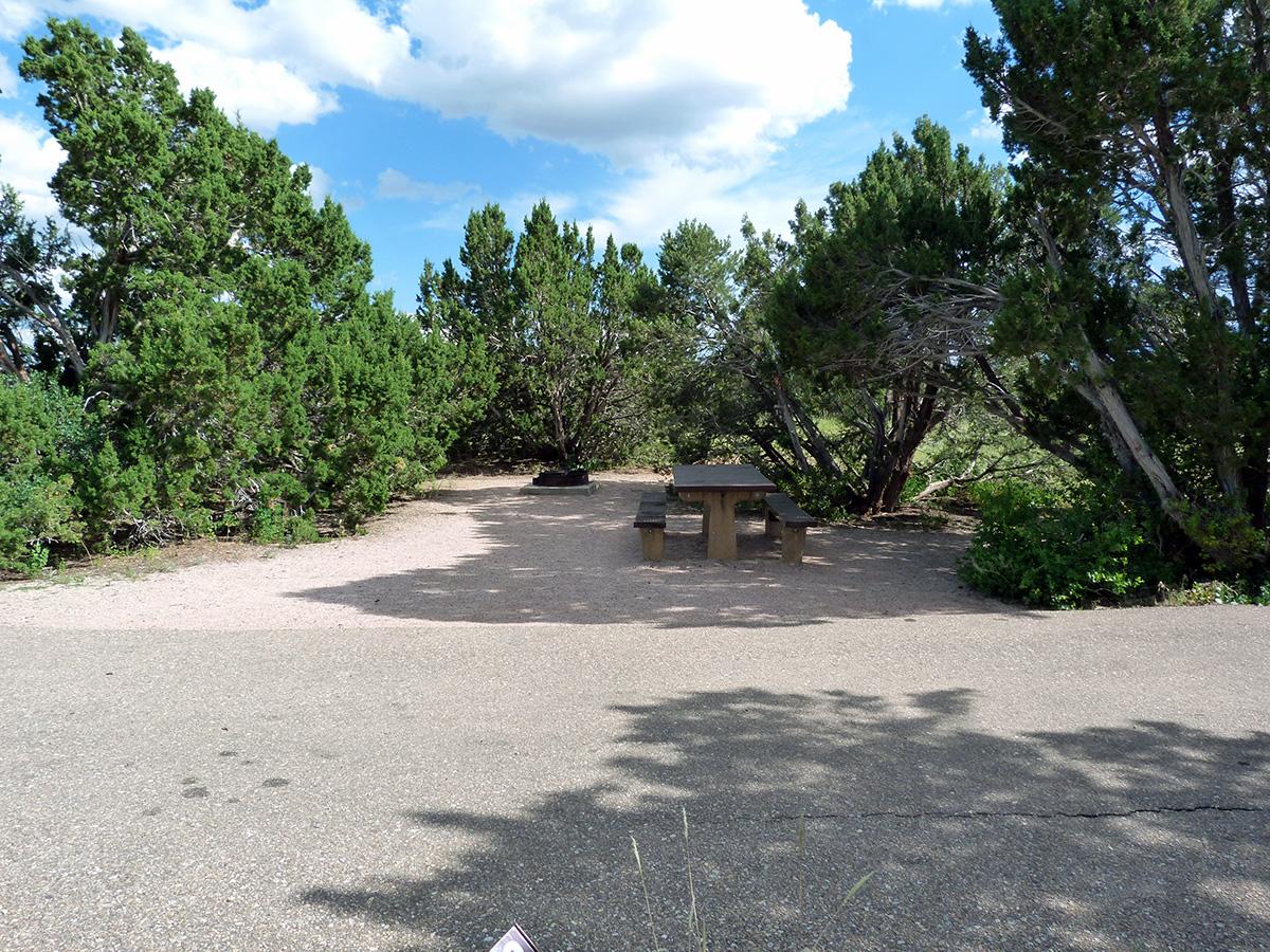 Campoutcolorado-lathrop-state-park-campground-rare-shade