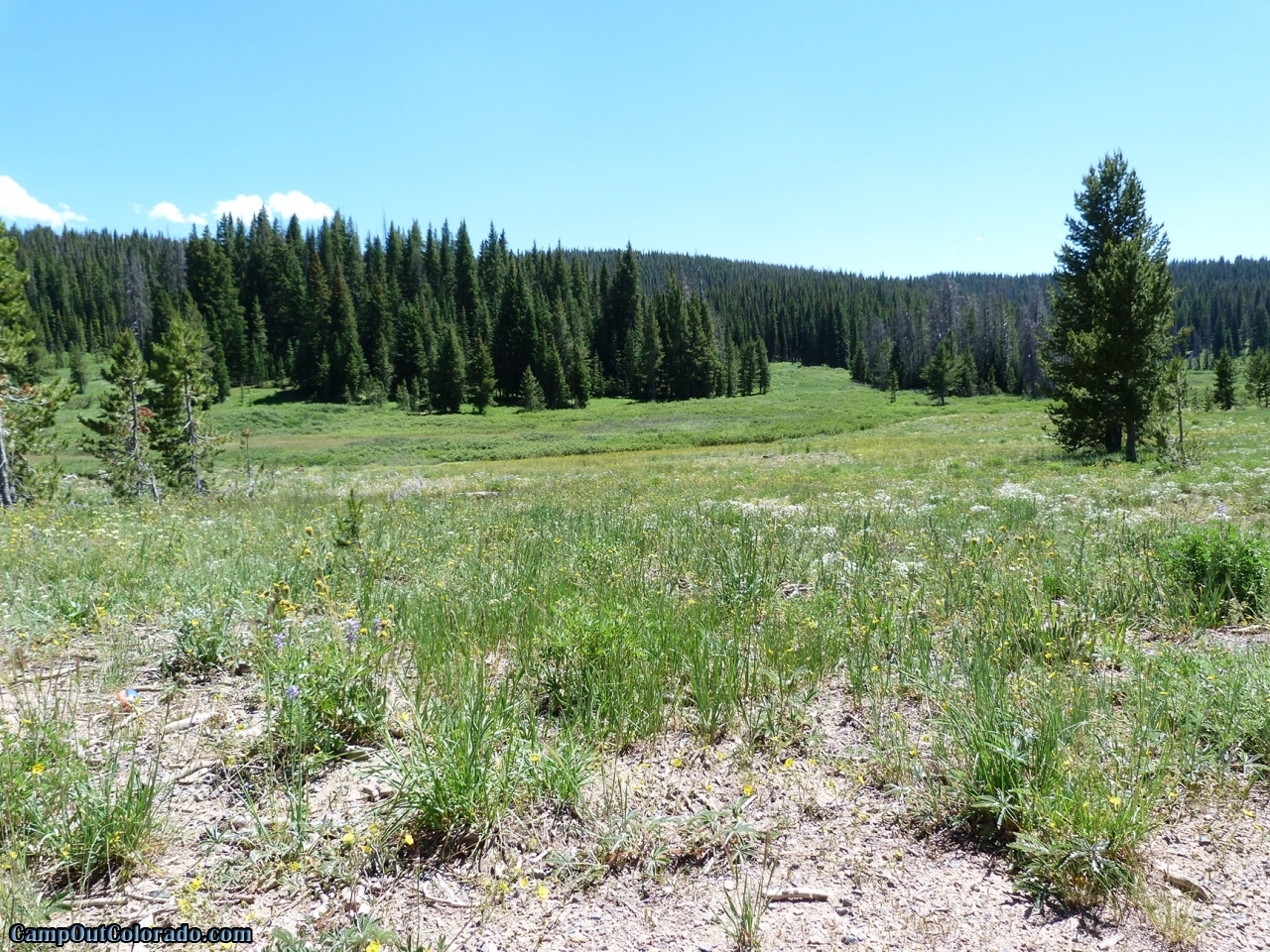 campoutcolorado-meadows-campground-rabbit-ears-open-area