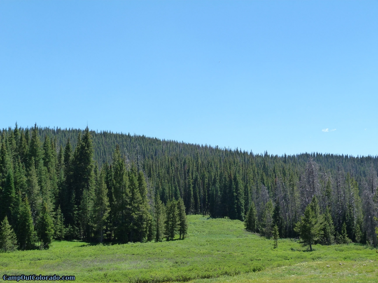 campoutcolorado-meadows-campground-rabbit-ears-view