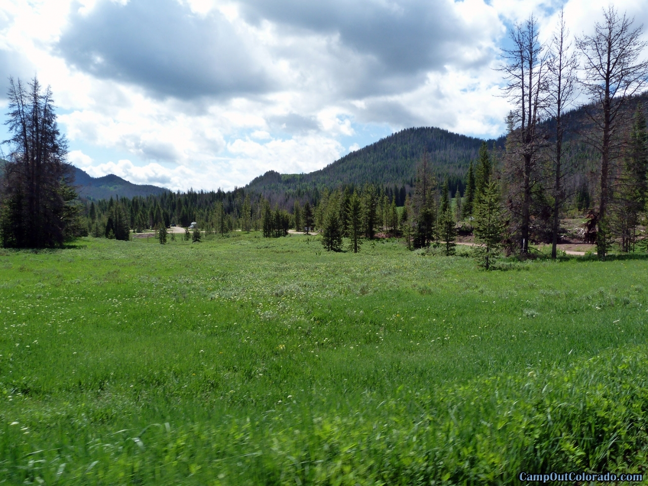 hahns-peak-lake-campground-meadow
