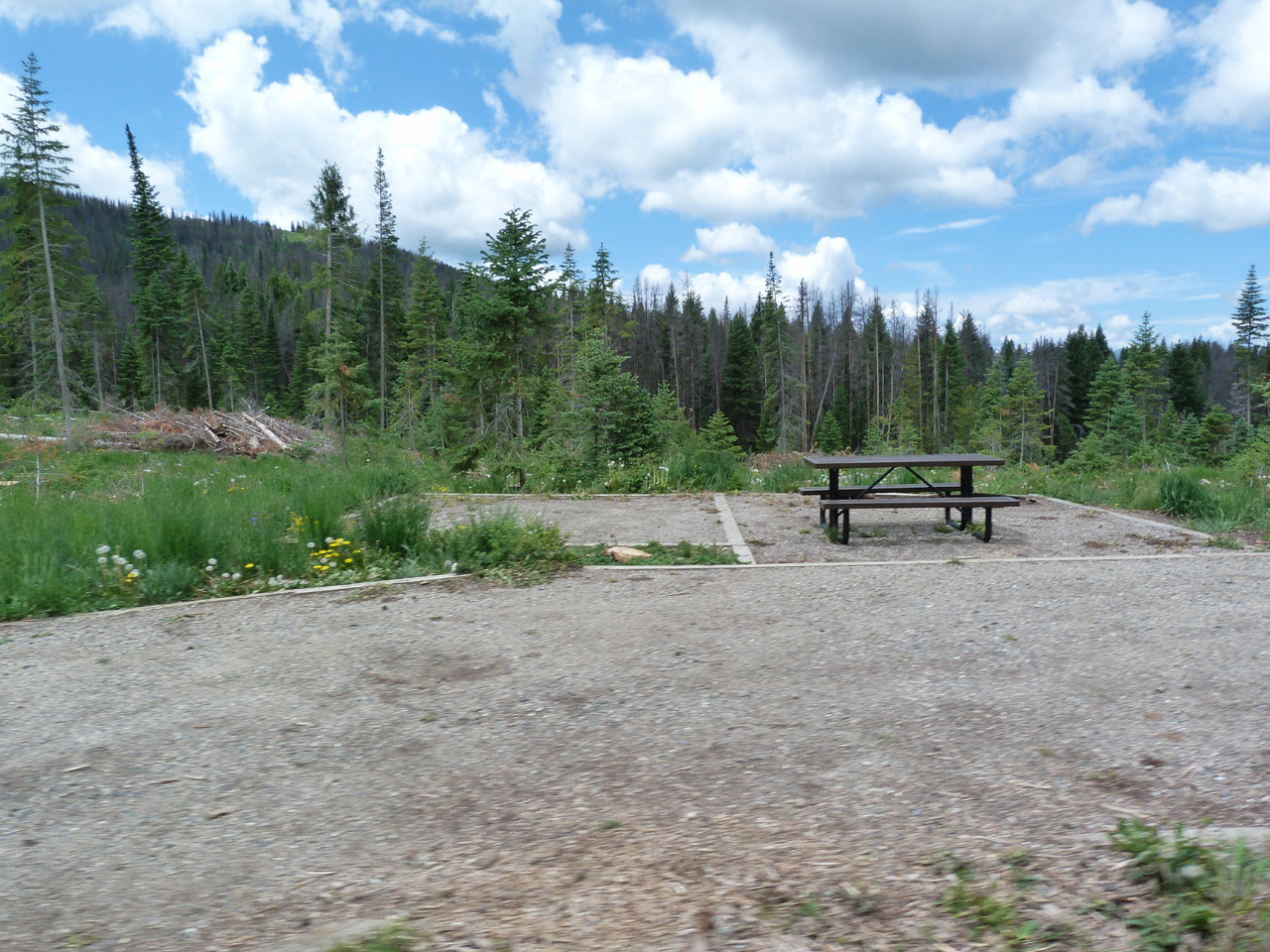 pearl-lake-state-park-campground-camping-in-forest