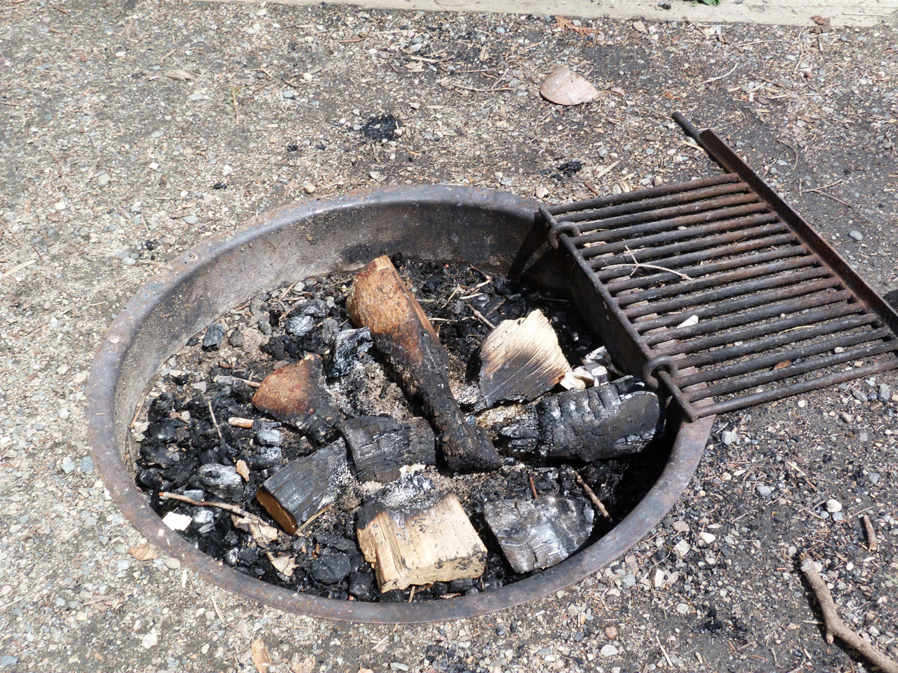pearl-lake-state-park-campground-low-fire-rings