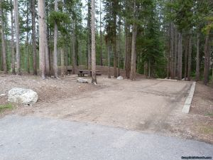 camp-out-colorado-chambers-lake-campground-thick-woods