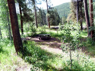 Camp-out-colorado-elk-wallow-wooded-site