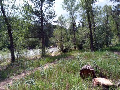 Camp-out-colorado-kelly-flats-campground-river-trail