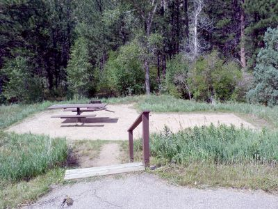 Camp-out-colorado-kelly-flats-campground-wooded-campsite