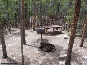 camp-out-colorado-lakeview-campground-thick-woods