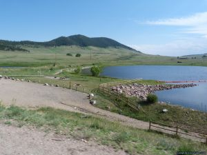 camp-out-colorado-pinewood-outlet-campground