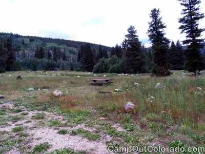 Campground-wildlife-viewing 1