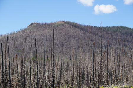 Campoutcolorado-burned-mountain
