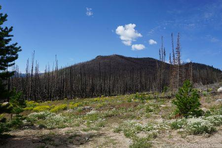 Campoutcolorado-burned-mountain Range