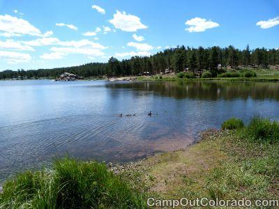 Campoutcolorado-dowdy-lake-campground-ducks-swim