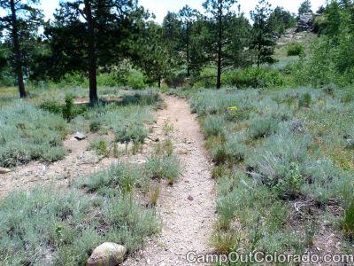 Campoutcolorado-dowdy-lake-campground-trail